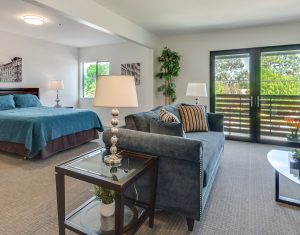 Senior Living Large Bedroom with View